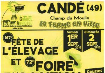 Fete de l elevage Cande 350x245 - Foire Exposition à Candé 1 & 2 Septembre 2018