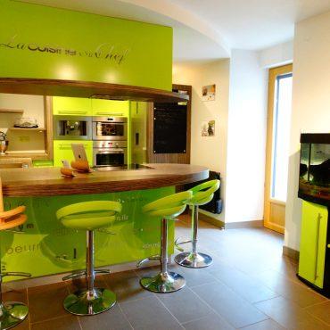 Cuisine sur mesure laquee vert 370x370 - Cuisine laqué vert et plan de travail décors bois foncé